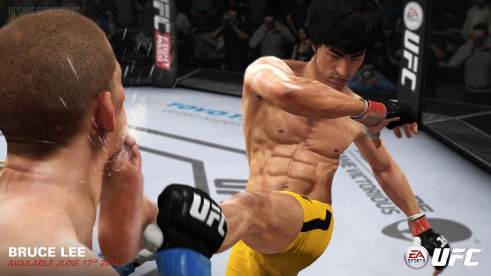 Bruce lee UFC.jpg